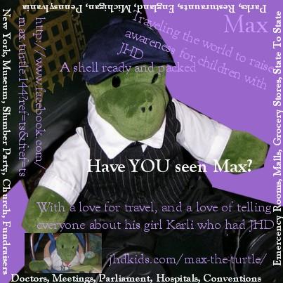 max the turtle